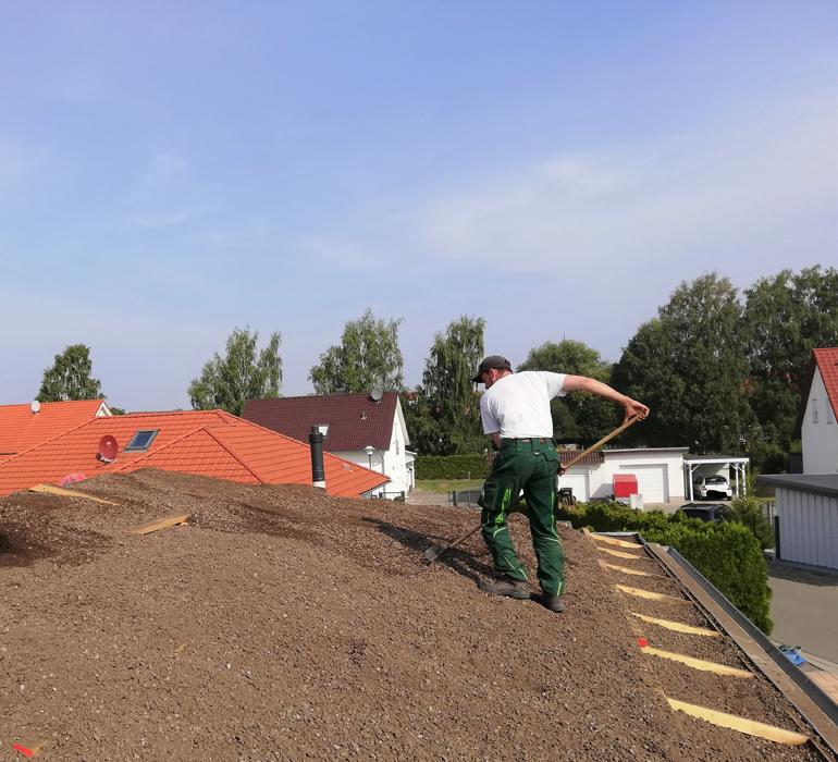 Dachbegrünungsarbeiten